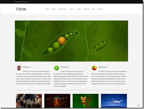 Orion_themes